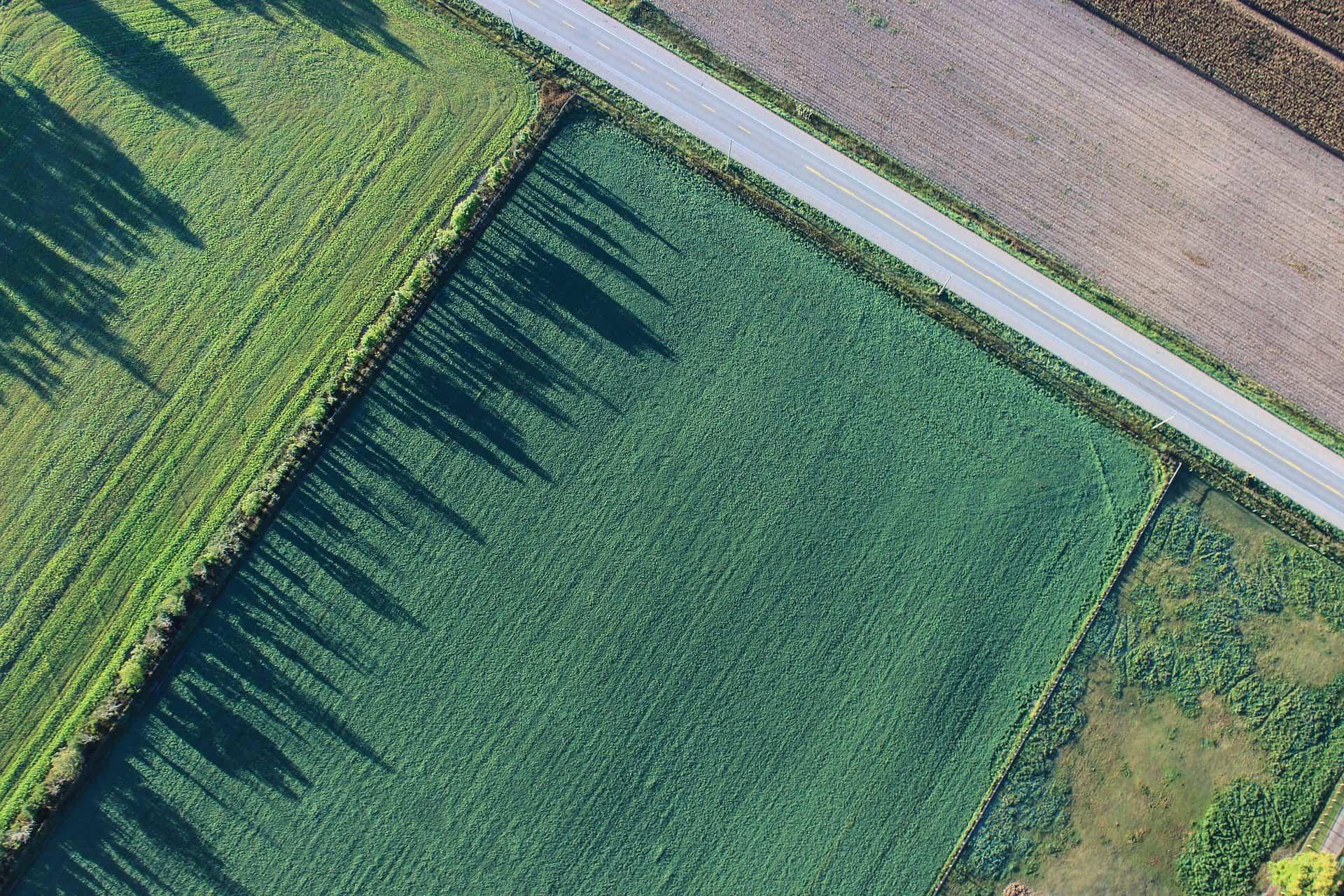 מה צריך לדעת לפני שבוחרים שמאי קרקע חקלאית?